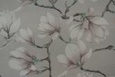 Ljus grå botten med rosa Magnolia blommor