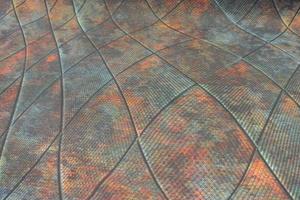 multifärgad konkav och konväx ruta