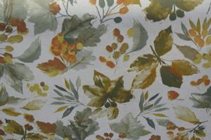 Appelbo ljus botten blad och frukter i höstfärger